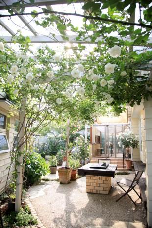 ガーデンルーム、庭