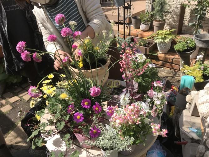 花束のような寄せ植え鉢