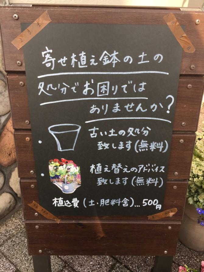 寄せ植え鉢の処分でお困りではありませんか