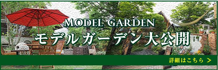 モデルガーデン大公開