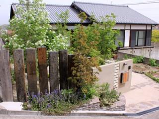 育てる庭。実る庭。散策できる庭。7